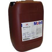 Компрессорное масло для винтовых компрессоров Mobil Rarus 425 (20л) фото