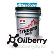 Компрессорное масло SYNDURO SHB 32 46 PAROIL S Т.заст. -60C фото
