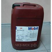 Масло компрессорное Mobil Rarus 425, 1025