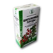 Лекарственные травы и чаи фото