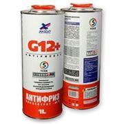 Antifreeze Coolant G12+ фото