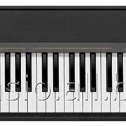Цифровое пианино Casio CDP-130BKC7 фото