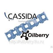 CASSIDA CHAIN OIL 150 1000 SPRAY Пищевое масло для цепей, синтетика NSF H1 фото