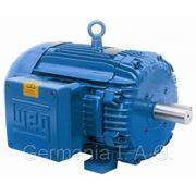 Электрический двигатель WEG фото