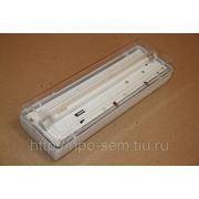 Светильник аварийный Pelastus с люминисцентной лампой и c аккумулятором. фото