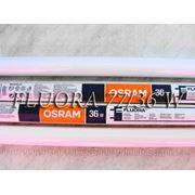 Лампы Osram Fluora 77/36 W для растений и аквариумов