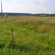 Оформление земельных участков под строительство фото