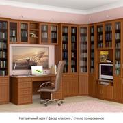 Мебель для домашних библиотек. фото