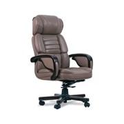Офисные кресла. фото