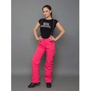 Горнолыжные брюки D-025 фото