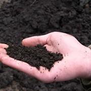 Продам грунт, чернозем, перегной, песок, щебень с доставкой фото