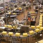 Проектирование заводов пищевой промышленности фото