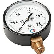 Манометр TM310Р 63 мм; 0…25 бар., G1/2, Тмах=150 °С, кл. 1,5, корп. сталь, механизм-латунь фото