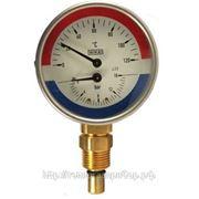 Термоманометр Тип WP (подключение снизу) фото