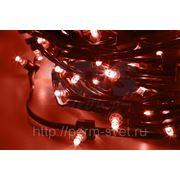 """Гирлянда """"LED ClipLight"""" 12V 150 мм упаковка 100м фото"""