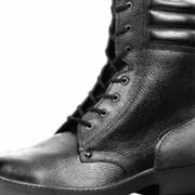 Ботинки «Рысь» фото