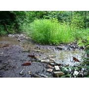 Дноуглубление рек и водоемов фото