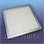 Светодиодные светильники Neolight 300x300 фото