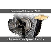 фото предложения ID 316366