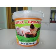 Премикс - Биолеккс для Свиней (300 г.) (сут.нор. 5г.-5руб.) фото