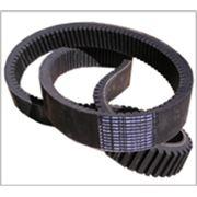 Ремень приводной зубчатый 68-24-2600 Интер-РТИ фото