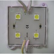 Модуль 4LED 5050-12-4L DC12V 6000К