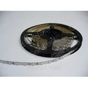 Светодиодная лента Geniled GL-60SMD3528W, ширина подложки 5мм фото