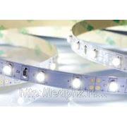 Лента RT 2-5000 12V Day White (3528, 300 LED, LUX)