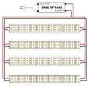 Яркая светодиодная одноцветная лента 450 LED/метр. Нейтральный белый цвет фото