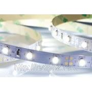 Лента RT 2-5000 12V Blue (3528, 300 LED, LUX) фото