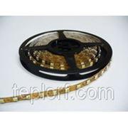 Светодиодная лента Geniled GL-30SMD5050WE фото
