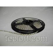 Светодиодная лента Geniled GL-120SMD3528W, ширина подложки 5мм фото