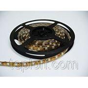 Светодиодная лента Geniled GL-60SMD3528WE фото