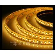 Лента RTW 2-5000PG 24V Yellow 2x (3528, 600 LED) фото