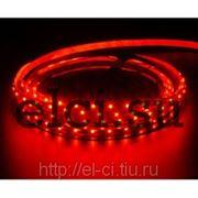 Лента светодиодная SMD3528 120/m красная 12В герметичная