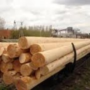 Деревянные опоры для линий электропередач
