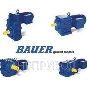 Мотор-редуктор Bauer фото