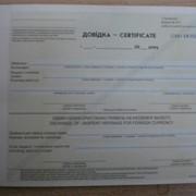 Довідка-certifikat (форма № 377) фото