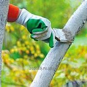 Садовая краска повышенной долговечности фото