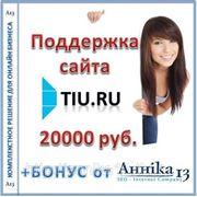 Аутсорсинговая поддержка сайта Tiu.ru, , персональный аккаунт менеджер