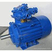 Электродвигатель 200 / 1000 ВАО2-315L6У2,5 фото