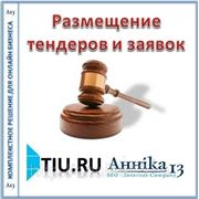 Размещение тендеров и заявок для сайта на tiu.ru