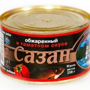 Сазан в томатном соусе фото