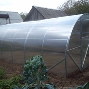 Теплица Урожай Сотка от 350 руб. фото