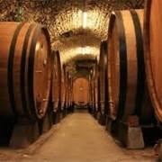 Производство виноматериалов фото