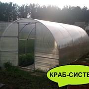 Теплица Сибирская 20ЦК-1, 10 метров. Система крепления Краб + форточка Автоинтеллект