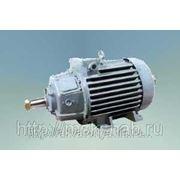 Электродвигатель ДРС-450 фото