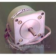 Электродвигатель ДШР 57 36В фото