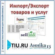 Импорт/Экспорт товаров и услуг в: Яндекс Маркет, Sellin5 и пр. для сайта на tiu.ru фото