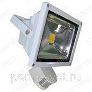 Светодиодный прожектор Geniled СДП-Д20, 120˚ фото